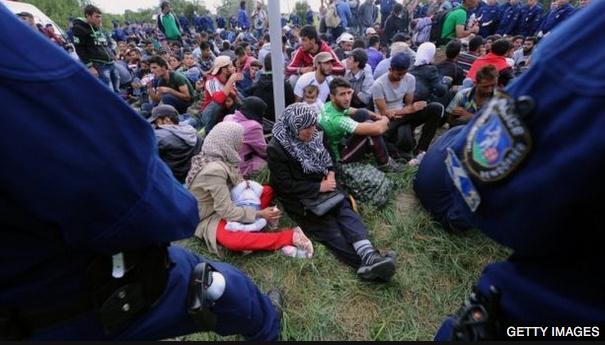 Migrants-1.png