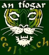 Celtic Tiger-2