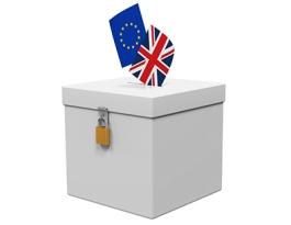 ReferendumVote