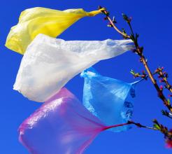 Plastic bags flying