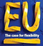 EU flexibility