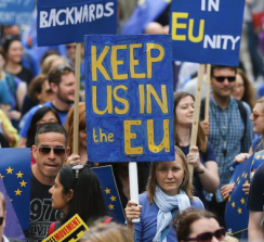 Remainers