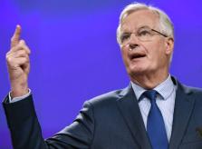 Barnier finger