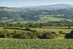 shropshire-farm