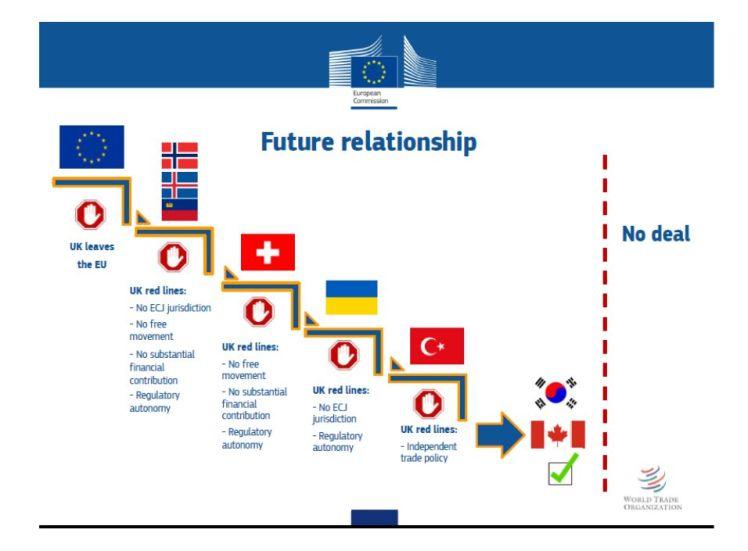 Barnier Steps