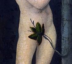 Fig Leaf 2